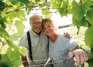 Divine-vines